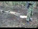 Columbian Soldiers Ambushed Aftermath