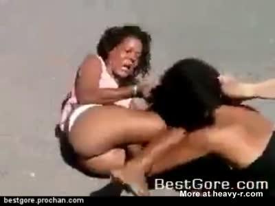 Crazy Bitchfight