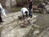 Skeleton found in river