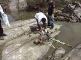 Skeleton found in river