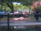 Lady On Bath Salts Naked In Public Park