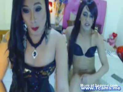 Pervert Tgirls Getting Horny On Cam