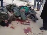 Body display Libya