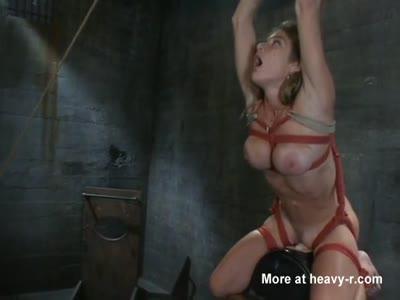 Giraffe having sex hard core